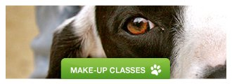 Schedule - Trust & Obey Pawsitive Dog Training - makeup_classes