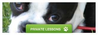 Private Dog Training Lessons Plymouth MI - Trust & Obey Pawsitive Dog Training School - private_lessons